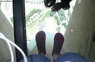 ガラス張りの高層ビルの下17