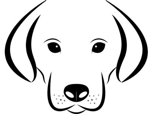 入院した飼い主の病院前で6日缶待ち続けた犬