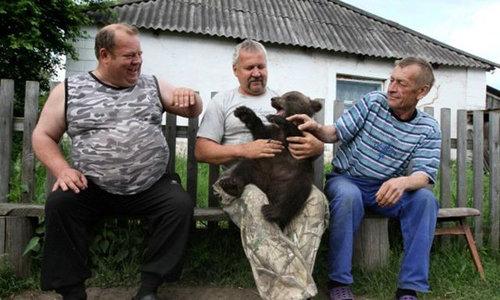 ロシアのクマ19