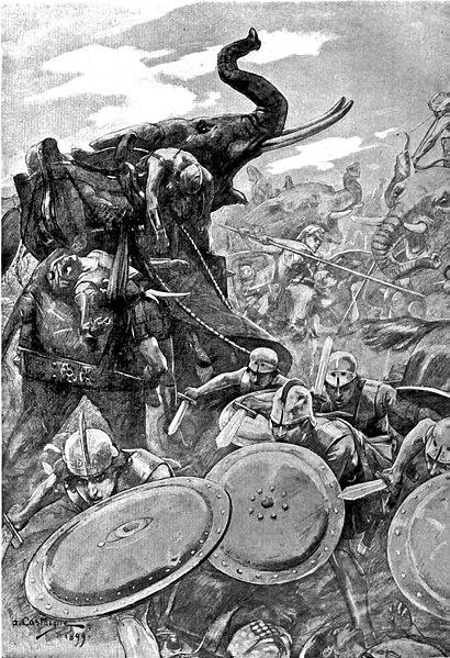 中世の想像で描かれたゾウ15