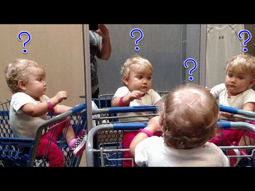 複数の鏡を見つけた赤ちゃん00