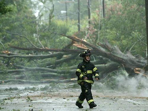 巨大ハリケーンになぎ倒された木で造った床や階段00