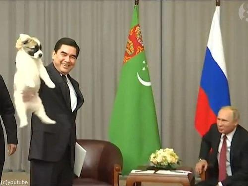 プーチンでさえ犬の正しい抱き方は知っている02