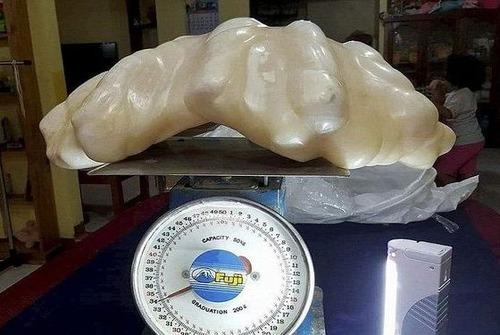 世界最大の真珠01