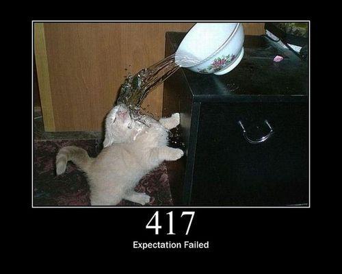 猫でHTTPステータスコード16