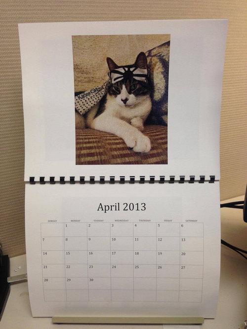 猫のカレンダー04