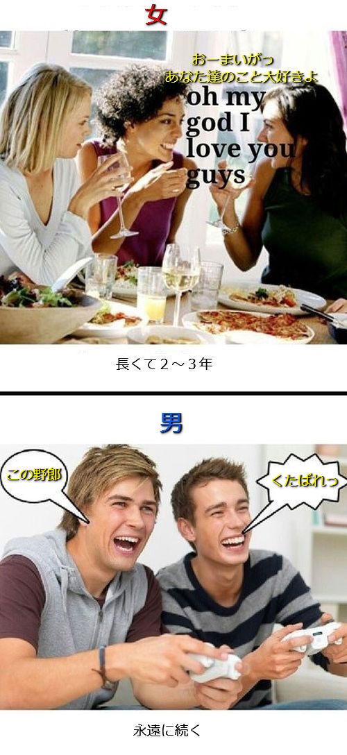 男女の違い12