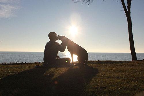 余命半年の愛犬と旅行12