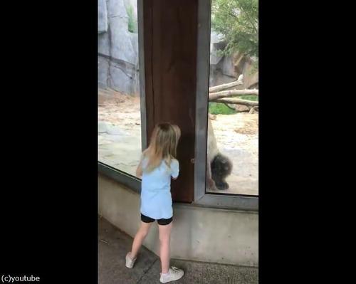 クマと少女のかくれんぼ01