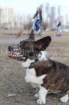犬の口輪02