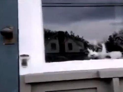 郵便物をブロックする猫01