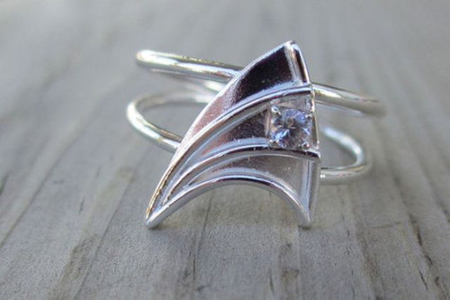 マニアとオタクの結婚指輪11