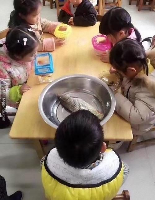 魚を持ってくる課題01