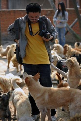 1500匹の犬と200匹の猫09