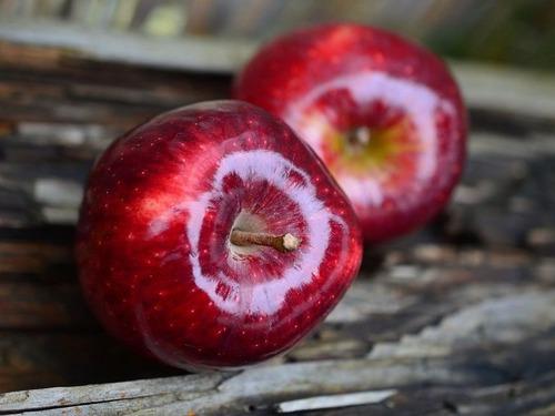 25年で1200種のリンゴの絶滅を救った男がいる