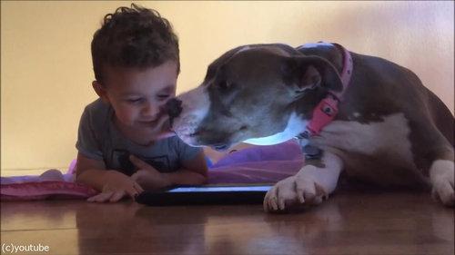 弟と犬とiPad03