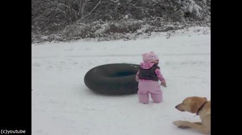 雪の日のわんこ02