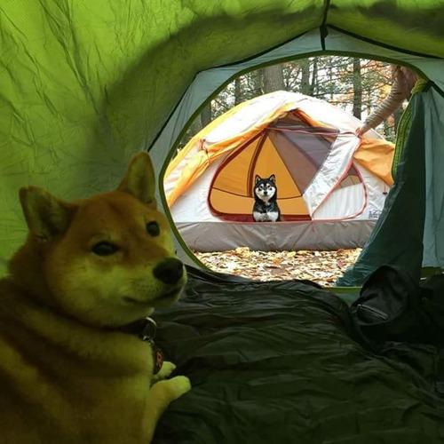 キャンプ友だち01