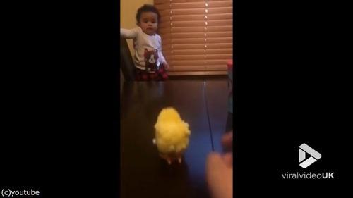 ひよこのおもちゃを怖がる赤ちゃんがじわる02