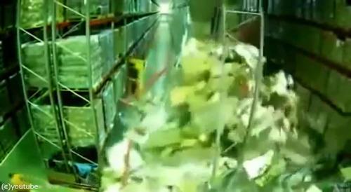 チーズ工場の棚が大崩れ02