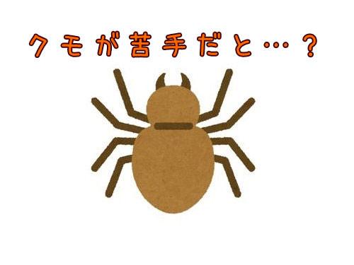クモが怖くてこんなことに00
