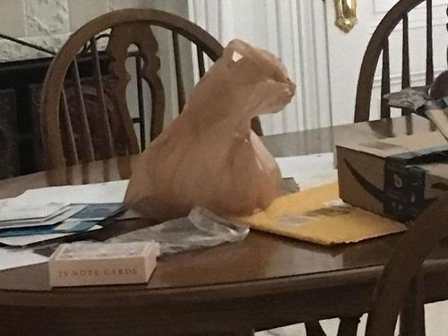 猫に見える何か00