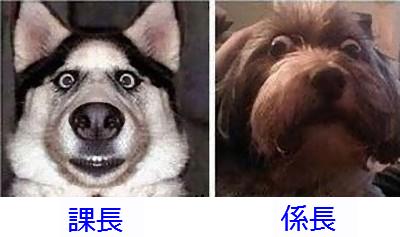 役職別02