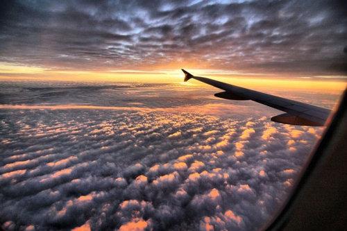 飛行機は窓側の席24