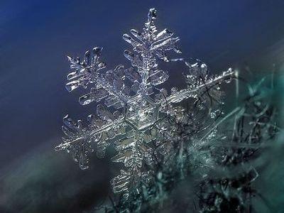 雪の結晶00