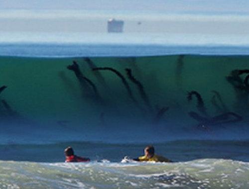 波越しに見える海草が怖い02
