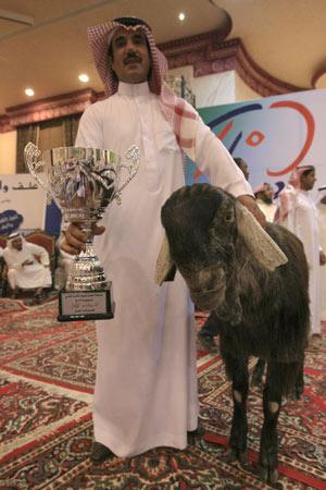 こんなに醜いのに「もっとも美しい賞」を勝ちとったヤギ05