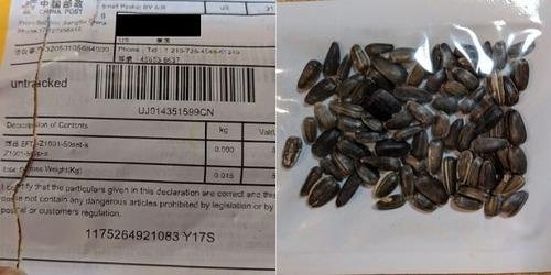 アマゾンが外国産の種の販売を禁止01