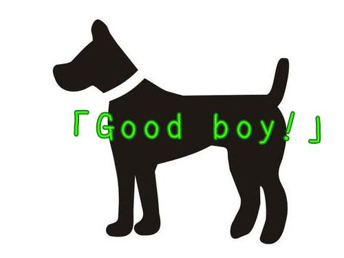 うちの犬を褒めたとき00