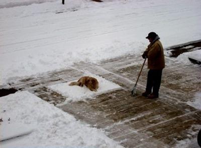 雪かきで困った01
