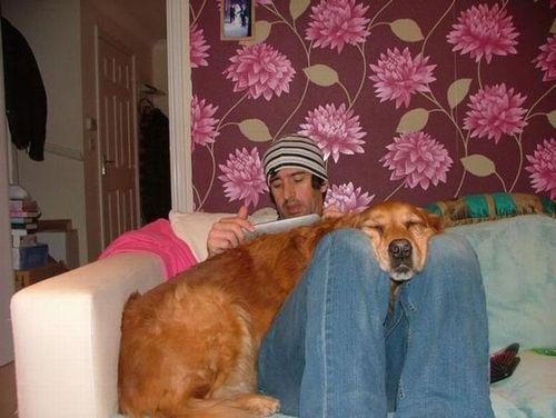 犬と仲良し14