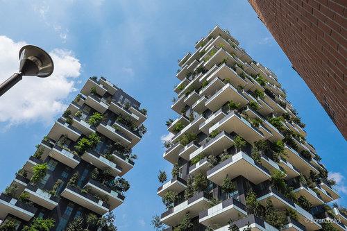 150本の木を所持するアパート02
