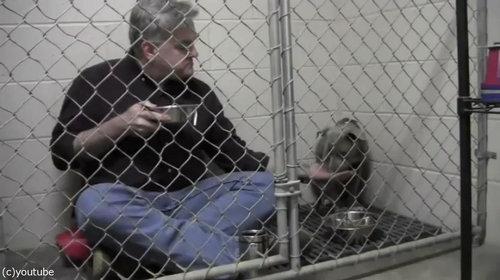 獣医がケージの中で犬と食事03
