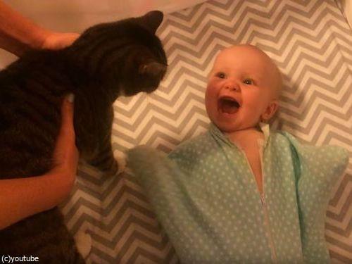 猫が大好きな赤ちゃん05