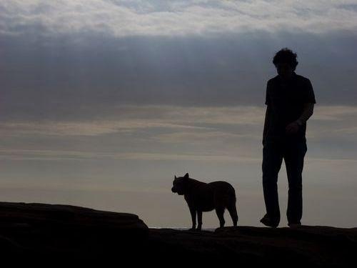 犬とスカイプ00