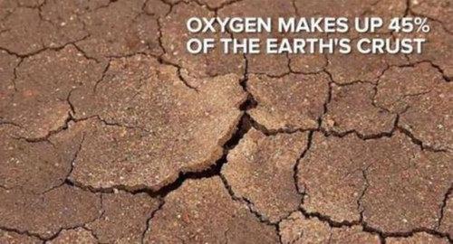 地球から酸素がなくなったら08