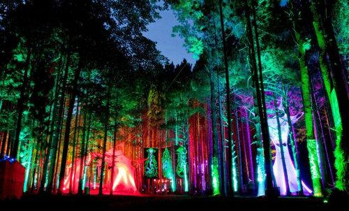 世界のお祭り・フェスティバル15