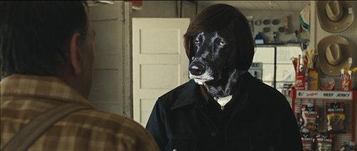 世界で最も感動の薄い犬06