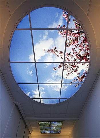 空が映し出された天井04