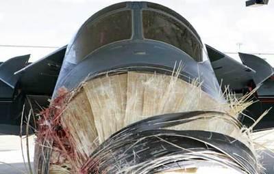 ペリカンと激突したF-111戦闘機05