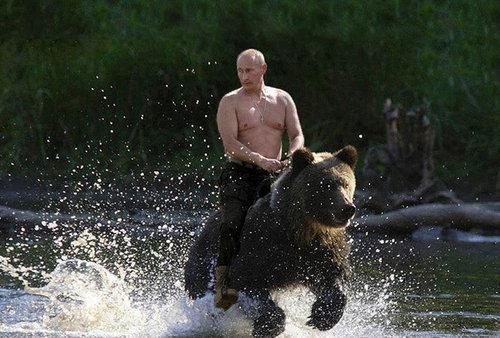 プーチン大統領とクマ