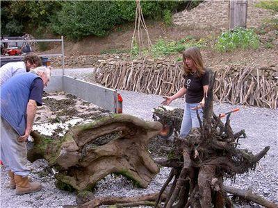 枯れ木で造られた馬のアート02