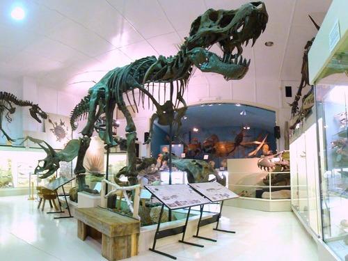 ティラノサウルスの化石、化石史上最高額で落札される00