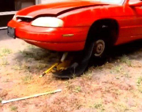 車を破壊して子猫を救出00