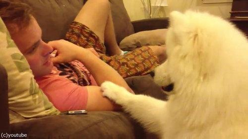 犬「あなたに寄り添ってもいいですか?」01