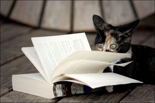 読書猫08